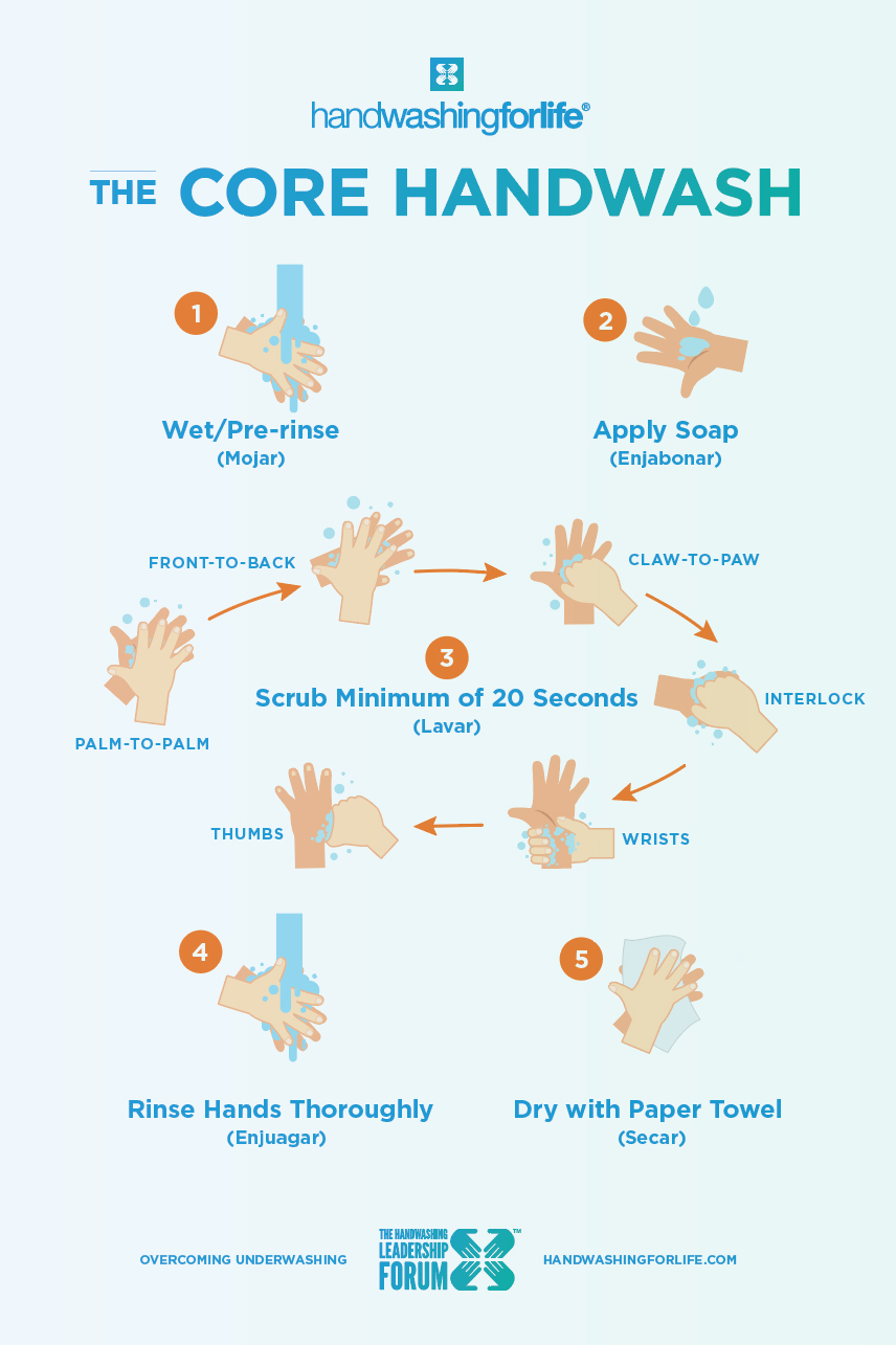 The Core Handwash Poster